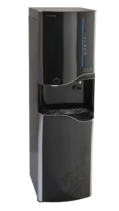 Wellsys Ice Dispenser Cooler